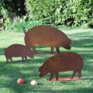 Rusty Pigs
