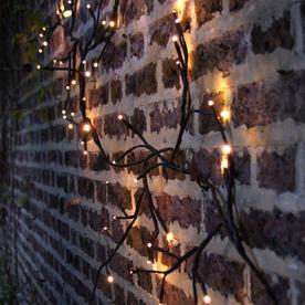 Solar Outdoor Ivy LED Lights