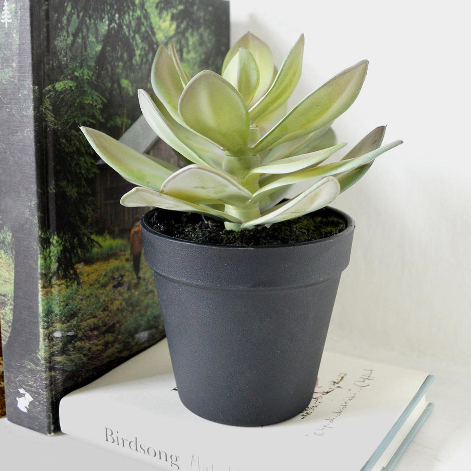 Small Faux Succulent in pot