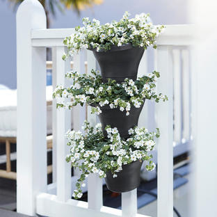 Vertical Wall Forest Planter