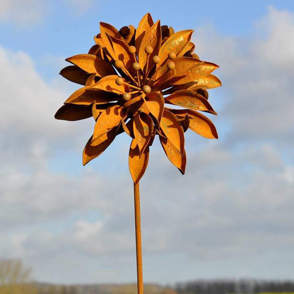 Rusted Aquilegia Flower