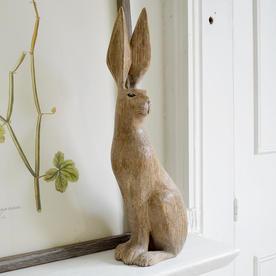 Listening Hare