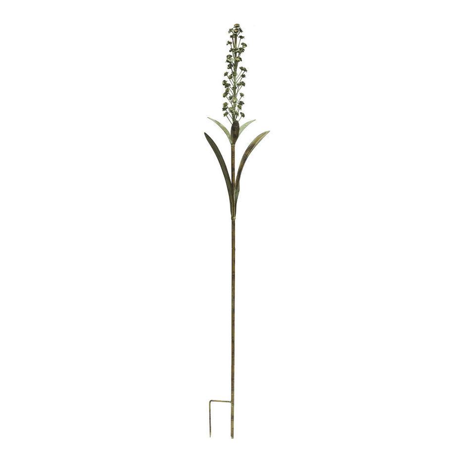 Foxtail Lily Single Stem