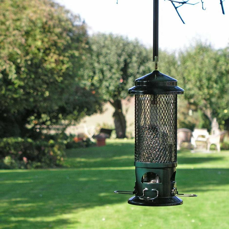 The Squirrel Buster Bird Feeder