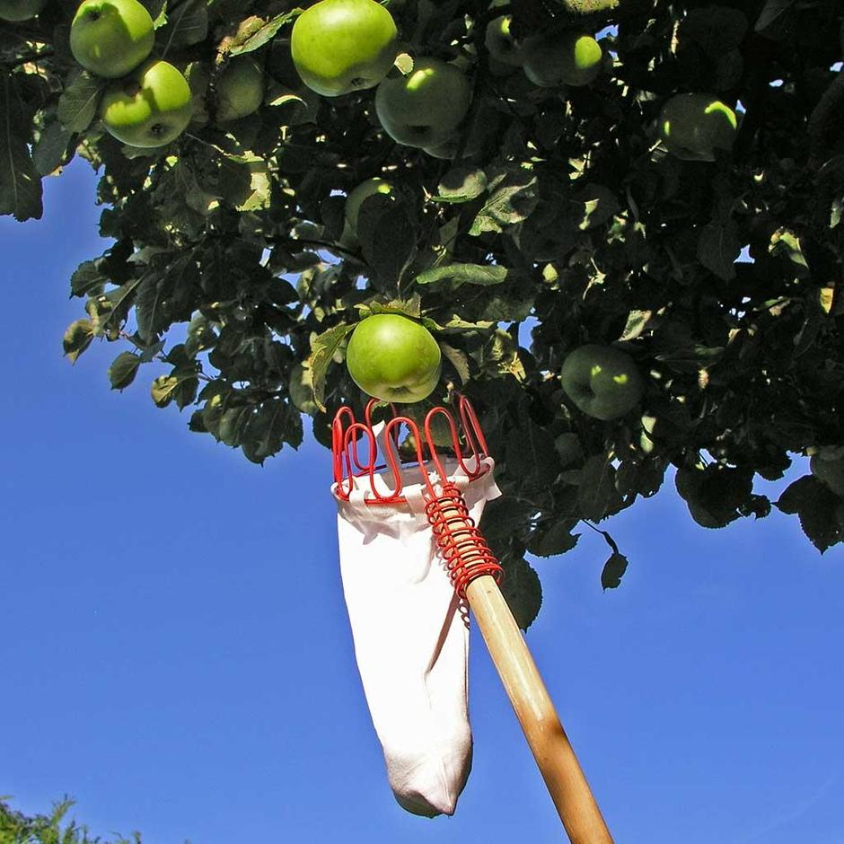 Quicker Picker Fruit Picker