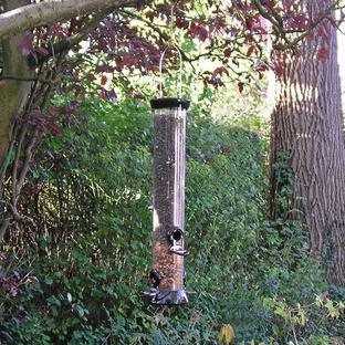 Onyx Bird Seed Feeder