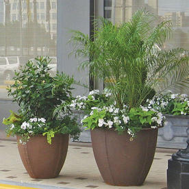 Norman Planters
