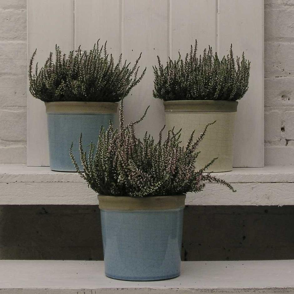 Glazed Herb Pot