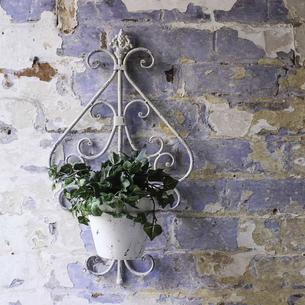 Fleur D'Lys Wall Pot and Holder