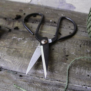 Traditional Flower Scissors