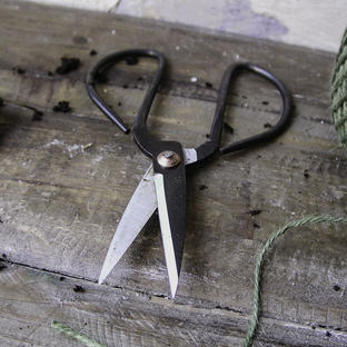 Traditional Flower Scissors