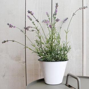 Faux Lavender Plant