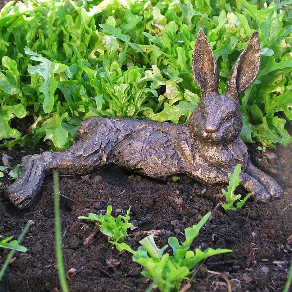 Relaxing Hare