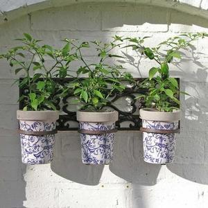 Wall Holder with 3 Ceramic Pots