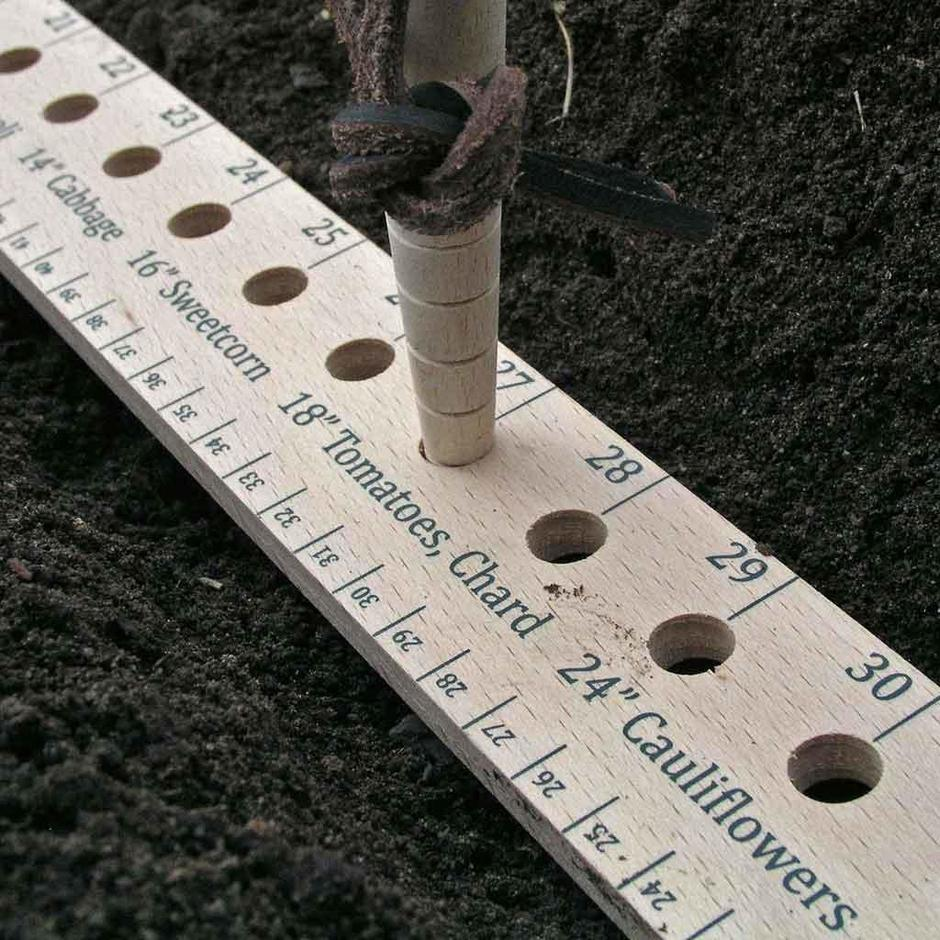 Seed & Plant Spacing Ruler