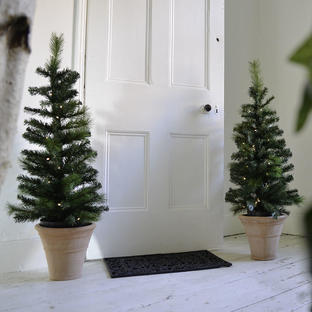 Front Door LED Christmas Trees