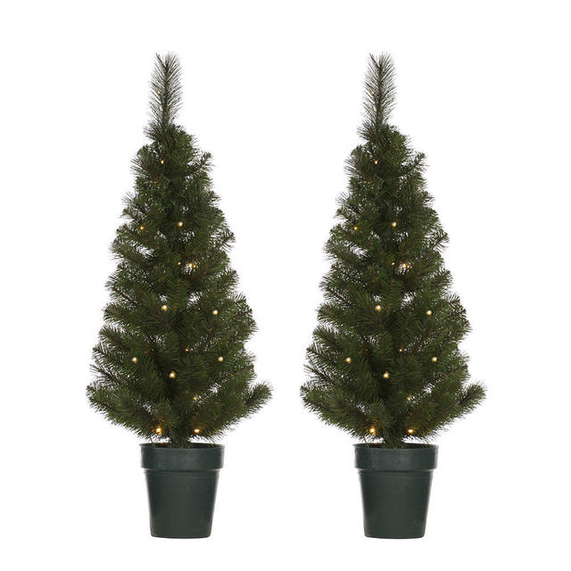 Buy Front Door Led Christmas Trees The Worm That Turned