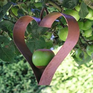 Shaker Heart Bird Feeder