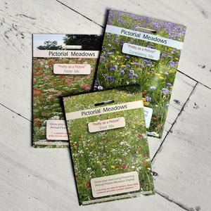 Cottage Garden Meadow Seeds