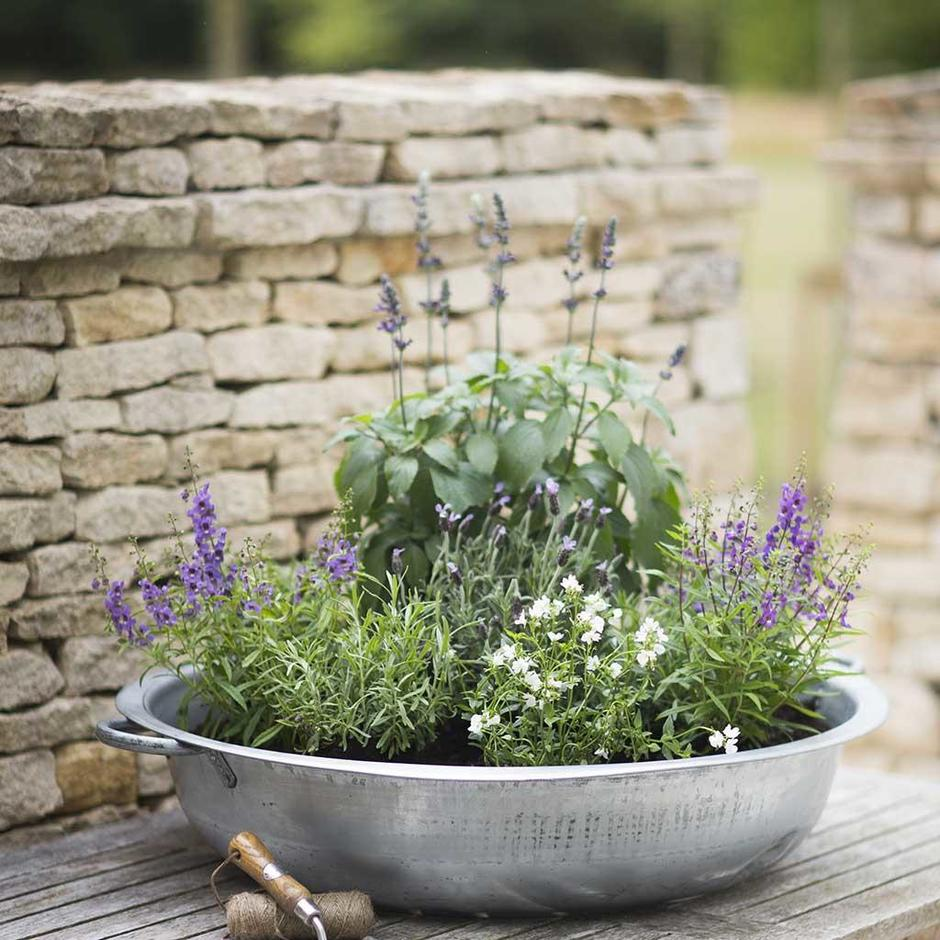 Galvanised Table Top Bowl Planter