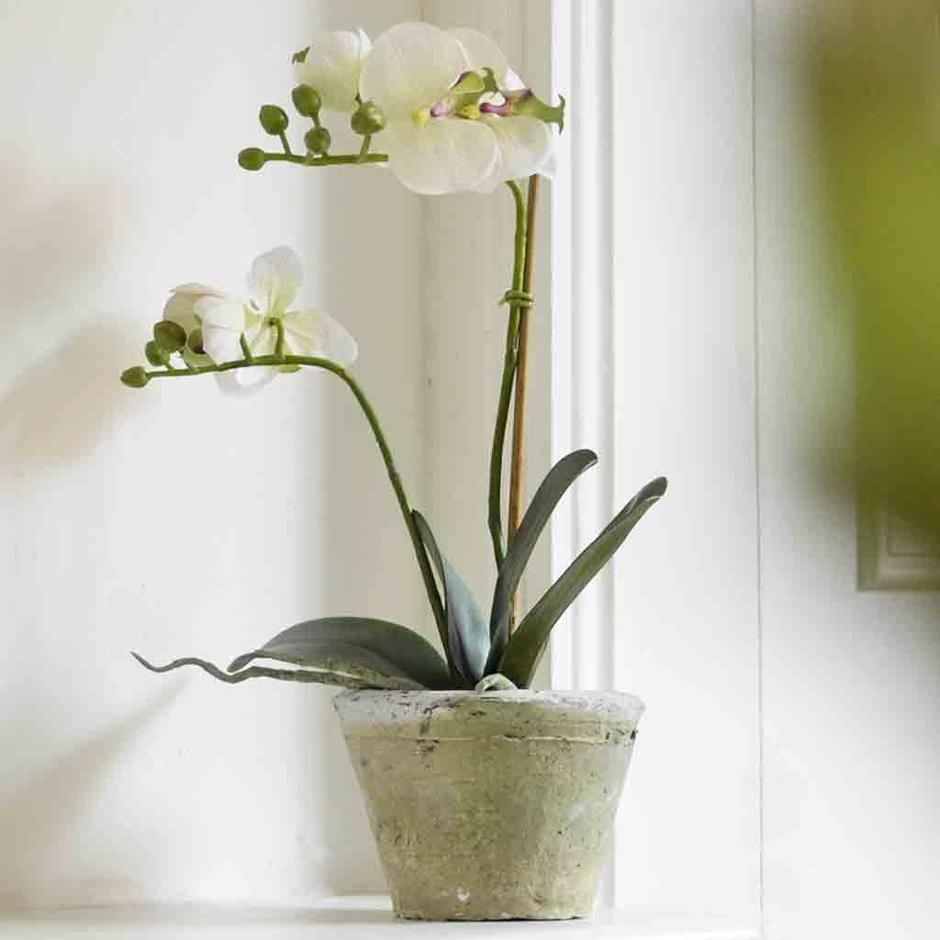 Faux Orchid in Rustic Pot