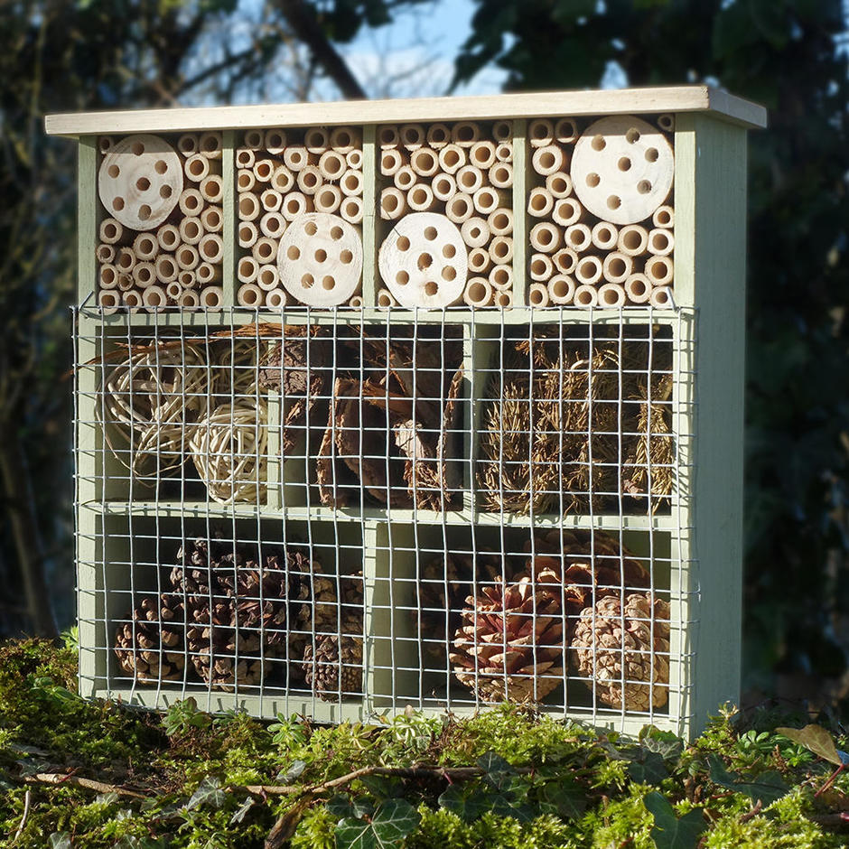 9 Room Insect Hotel