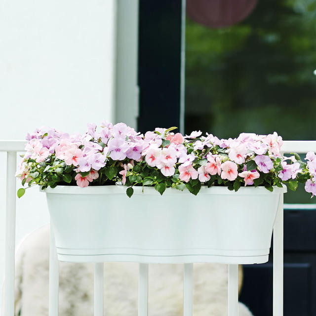 Buy triple hanging balcony planter the worm that turned for Balcony hanging planter