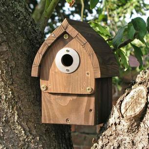 Cabin Multi Species Nestbox