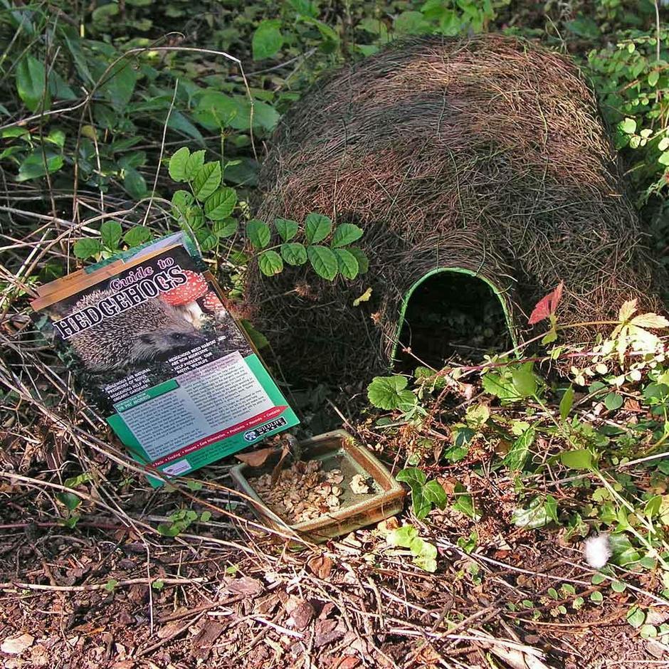 Hedgehog Lovers Set