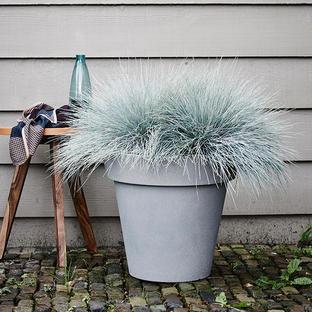 Texture Flower Pots
