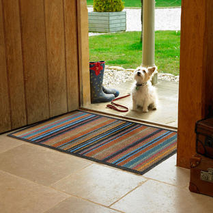 Turtle Mat Doormats