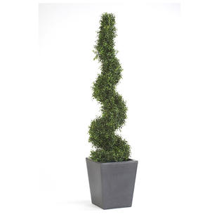 Faux Boxwood Spiral