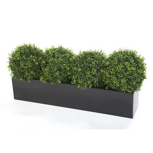 Window Box with Faux Boxwood