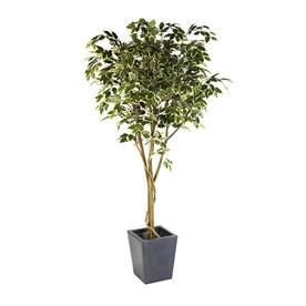 Faux Ficus Benjamina Vine