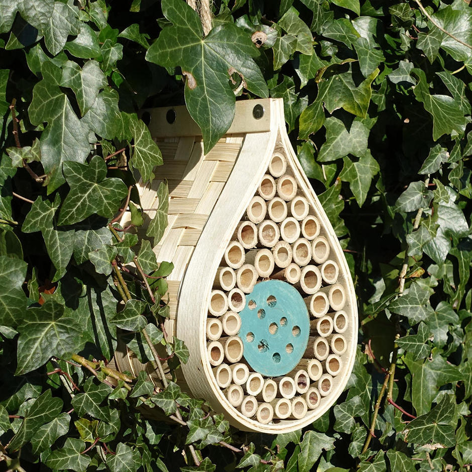 Dewdrop Insect and Bee House