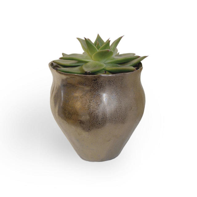 buy gold copper indoor plant pots � the worm that turned