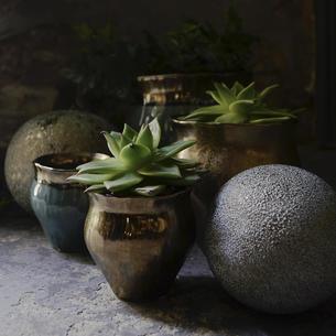 Gold Copper Indoor Plant Pots