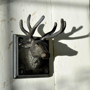 Bucken Single Stag Wall Hook