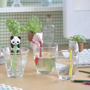 Drinking Animal Mini Seed Kit