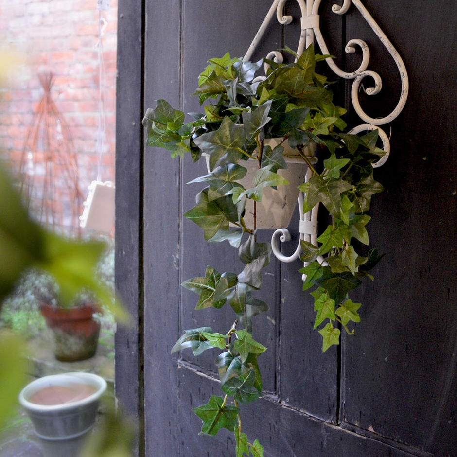 Trailing Faux Ivy