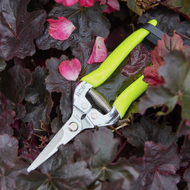 FloraBrite Flower & Fruit Snips