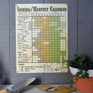 Vintage Style Sowing and Harvesting Calendar