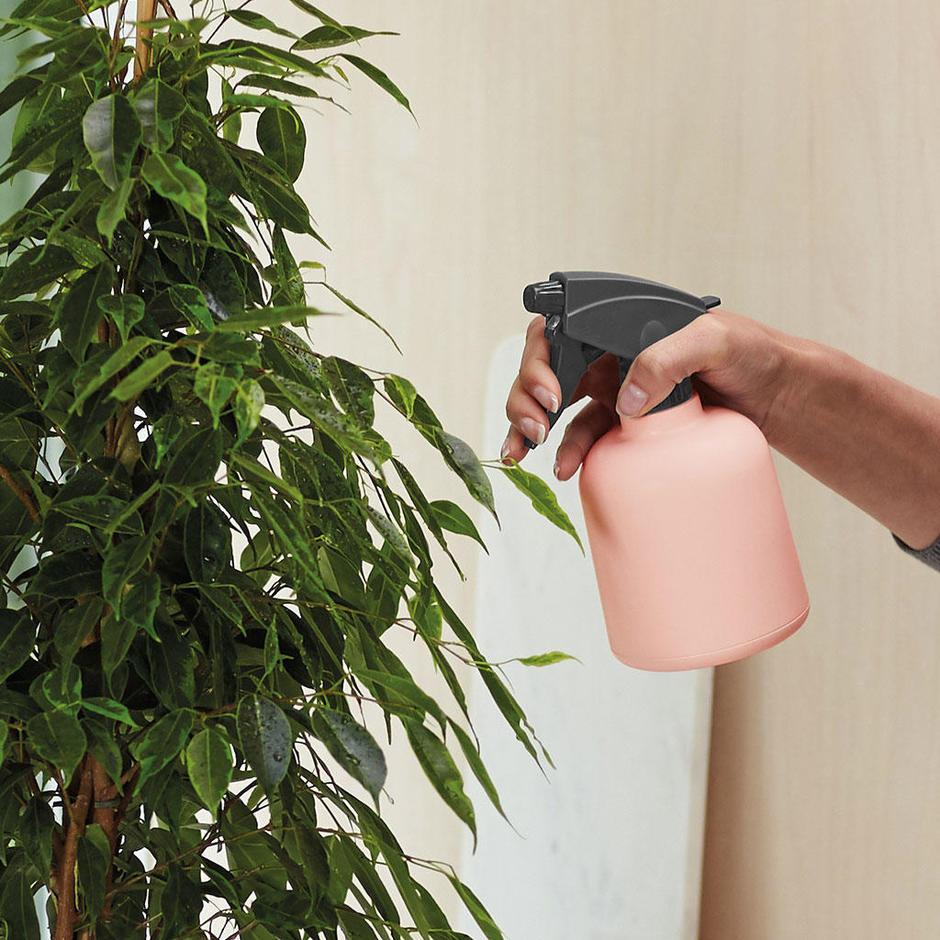 Plant Mist Spray