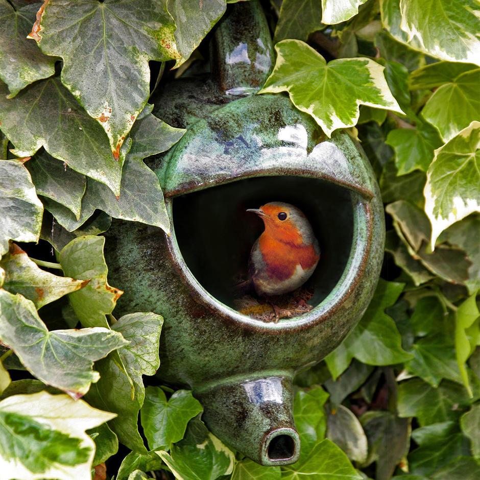 Green Robin Teapot Nester