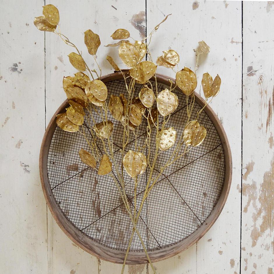 Metallic Gold Honesty Spray