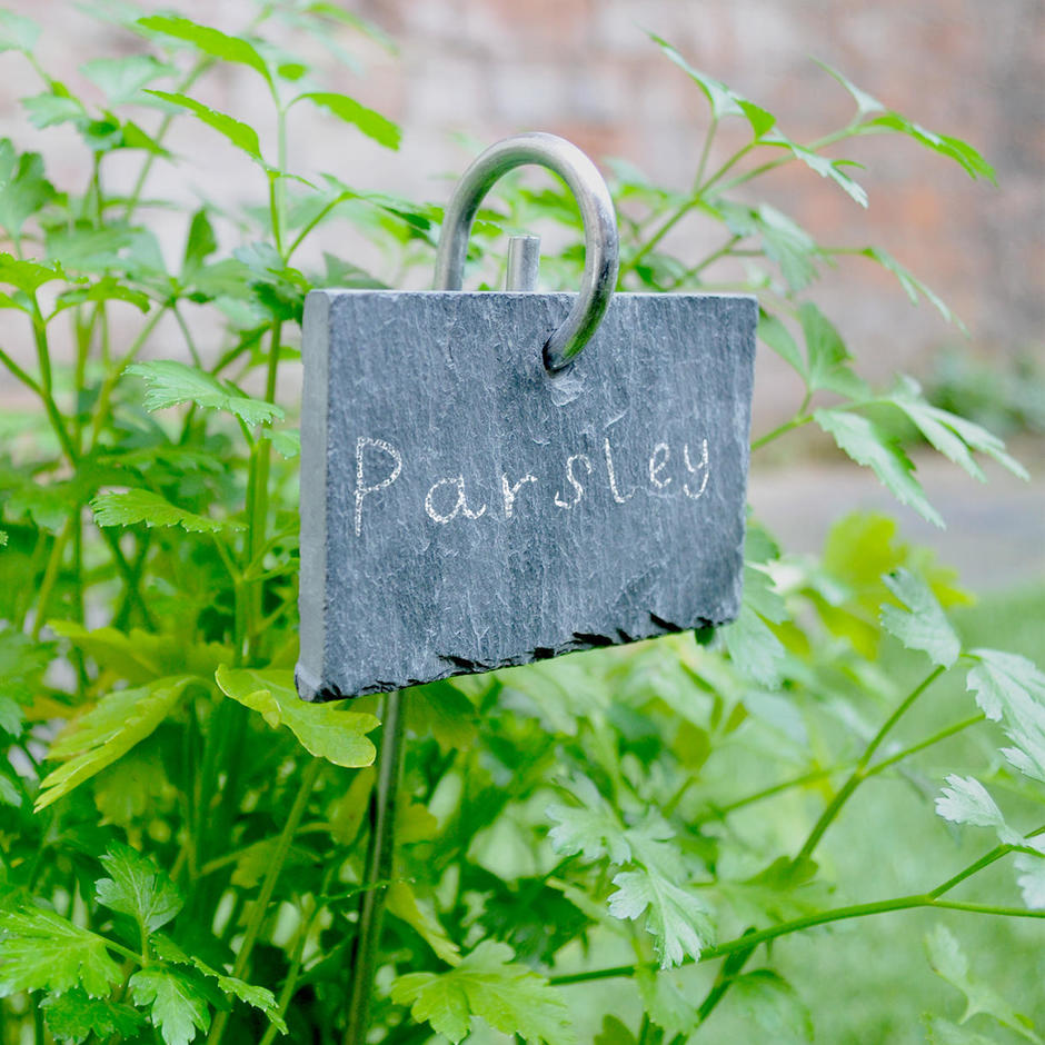 Slate Plant Marker on a Stick