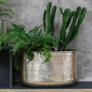 Silver Hammered Finish Indoor Planters