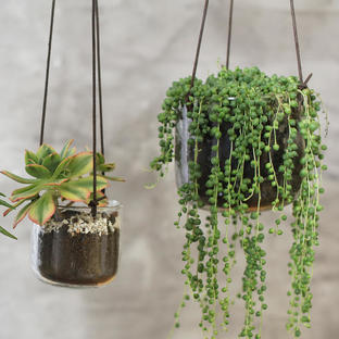 Recycled Glass Hanging Planters