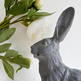 Large Grey Sitting Hare