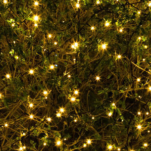 Outdoor string lights and fairy lights 400 solar warm white led string lights aloadofball Choice Image